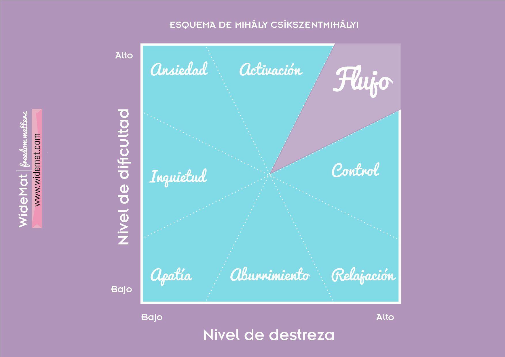 estado de flow infografía