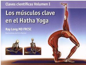 los musculos clave en el hatha yoga