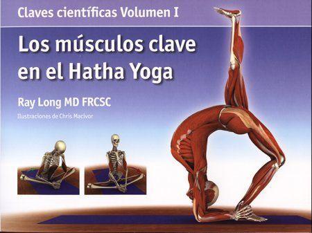 Aprende las claves para entender los músculos dentro del contexto del Hatha Yoga