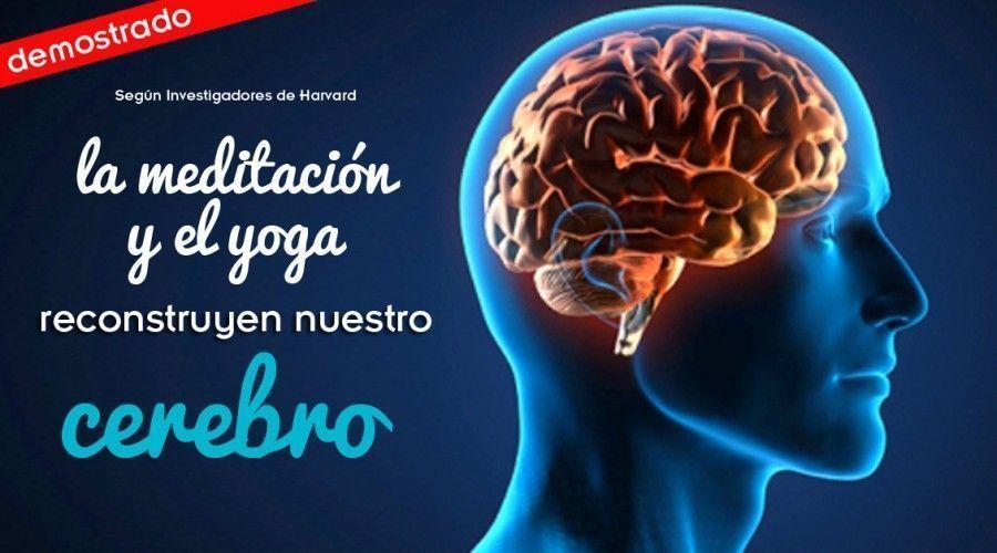 Demostrado: la meditación modifica nuestro cerebro
