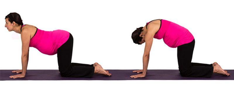la postura de yoga del gato para embarazadas
