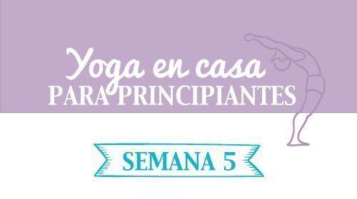 yoga en casa en pdf