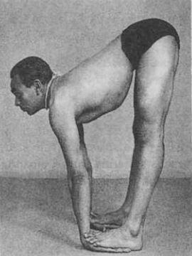 Un paso intermedio de la Padahastasana tal como la realizaba Iyengar